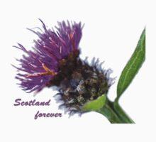 Scotland Forever by missmoneypenny