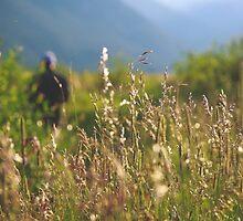 Rocky Mountain 4 by Clayton Lyon