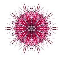 Pattern Design Kaleidoscope Photographic Print