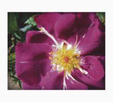 Mysterious Magenta Beauty - Wild Rose Kids Tee