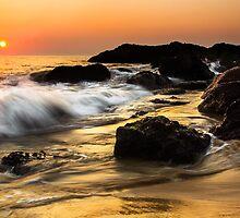 Pure Gold by Nishant Kuchekar