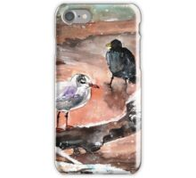 Birds On Lake Constance In Winter iPhone Case/Skin