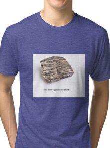 the gneissest shirt Tri-blend T-Shirt