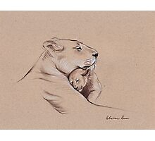 """A Mother's Pride"" Lioness and cub original pencil drawing. Photographic Print"