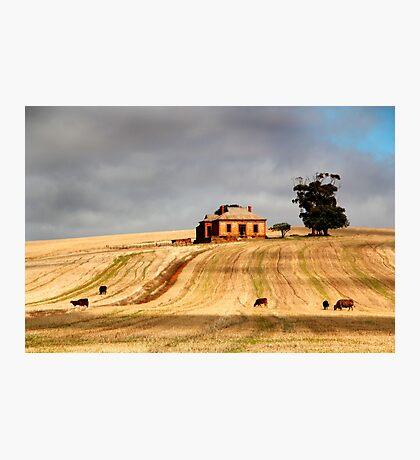 Rural Australia Photographic Print