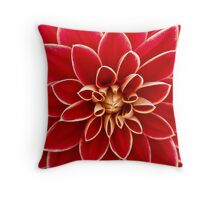 Red Perfection Throw Pillow