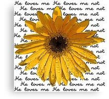 He Loves Me - He Loves Me Not Canvas Print