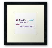 developer's mood Framed Print