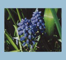 Baby Blues - Grape Hyacinths One Piece - Short Sleeve
