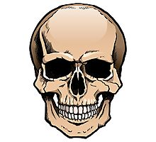 Human skull frontal view Photographic Print