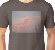Renaissance Sky  Unisex T-Shirt