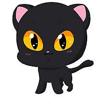 Cute Black Cat Photographic Print