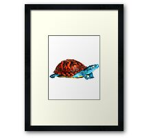 Realistic Squirtle Framed Print