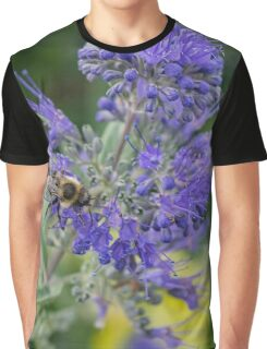 Bombus Impatiens - Common Eastern Bumble Bee | Wantagh, New York Graphic T-Shirt