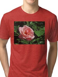 Late Summer Rose Tri-blend T-Shirt