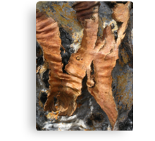 Abstract in Bark Canvas Print