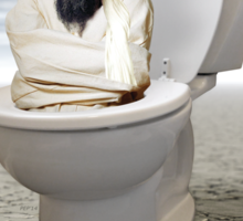 Islamic State of the Inner Toilet Sticker