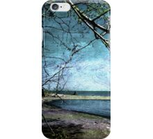 Barrier Beach - Old Woman Creek iPhone Case/Skin