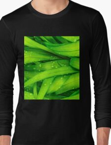 Dew on Leafs Long Sleeve T-Shirt