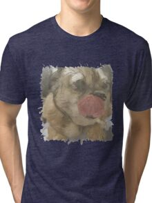 This pug is freaking excited Tri-blend T-Shirt