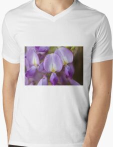 wisteria blooming Mens V-Neck T-Shirt