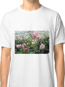 Pink gentle roses in the garden Classic T-Shirt