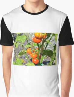 Tomatoes growing in the garden Graphic T-Shirt