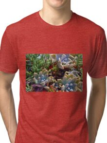Beautiful succulents in the garden Tri-blend T-Shirt