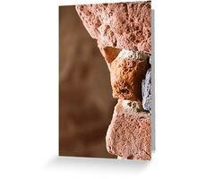 antique ancient walls of castle Greeting Card