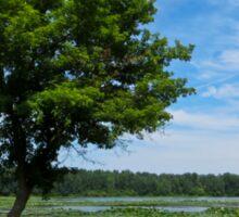 East Harbor State Park - Scenic Overlook 2 Sticker