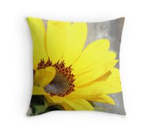 Tuscany Sunflower Throw Pillow