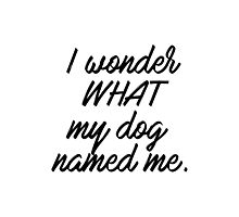 I wonder what my dog named me. Photographic Print