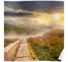 wild flowers on the hillside at sunset Poster