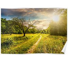 Winter in mountains meets spring in valley at sunset Poster