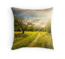Winter in mountains meets spring in valley at sunset Throw Pillow