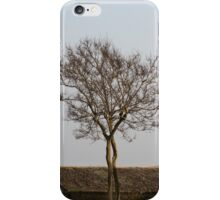 trees in spring iPhone Case/Skin