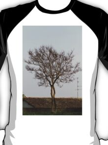 trees in spring T-Shirt