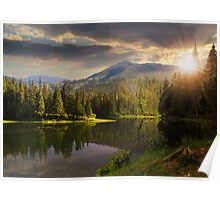 pine forest near the mountain lake at sunset Poster
