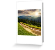 road through conifer forest in mountains at sunset Greeting Card