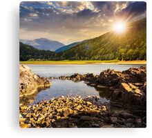 lake shore with stones near pine forest on mountain at sunset Canvas Print