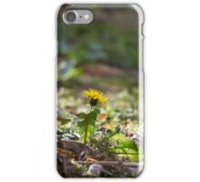 meadow at sunset iPhone Case/Skin