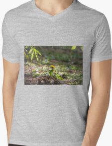 meadow at sunset Mens V-Neck T-Shirt