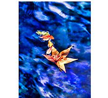 Autumn leaves floating on dark blue water of Blue Spring State Park in Florida Photographic Print