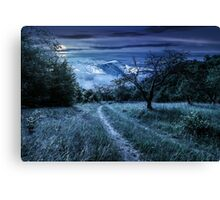Winter in mountains meets spring in valley Canvas Print