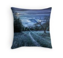 Winter in mountains meets spring in valley Throw Pillow