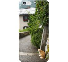 Cats of Hallstatt iPhone Case/Skin