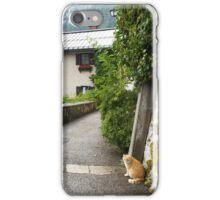 Cats of Hallstatt iPhone Case/Skin