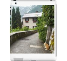 Cats of Hallstatt iPad Case/Skin