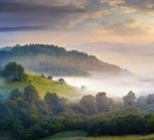 mysterious fog on hillside in rural area Sticker