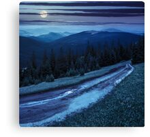 road through conifer forest in mountains at night Canvas Print